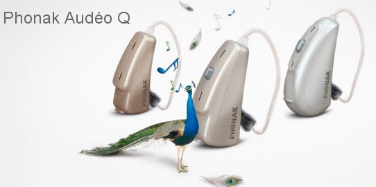 Phonak Audeo Q Hearing Aids